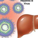 Лечение и профилактика вирусного гепатита В (Б)