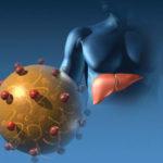 Гепатит А (болезнь Боткина): симптомы и лечение